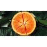 ariadne Orange Face Oil 50ml